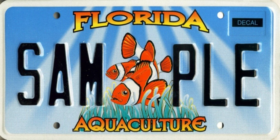 Florida vehicle tags vehicle ideas for Renew florida fishing license
